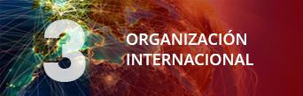 Una organización internacional